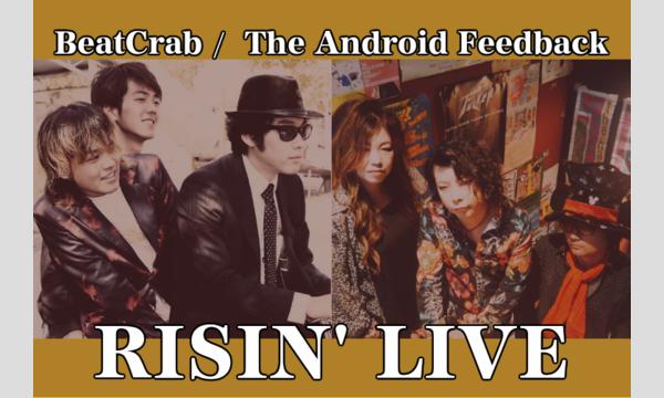 雷神雷舞BeatCrab / The Android Feedback イベント画像1