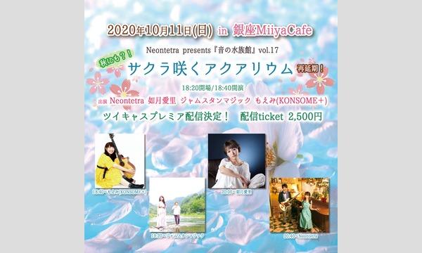 Miiya CafeのNeontetra presents『音の水族館』vol.17 サクラ咲くアクアリウムイベント