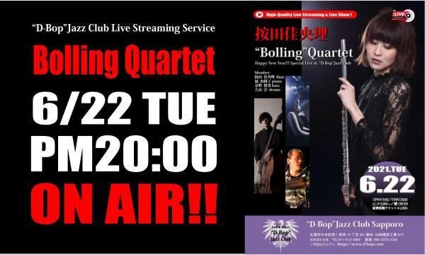 """按田佳央理 """"Bolling"""" Quartet Live at """"D-Bop""""Jazz Club イベント画像1"""