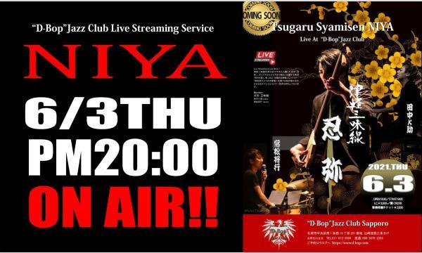 """忍弥(NIYA) Live At """"D-Bop""""Jazz Club イベント画像1"""