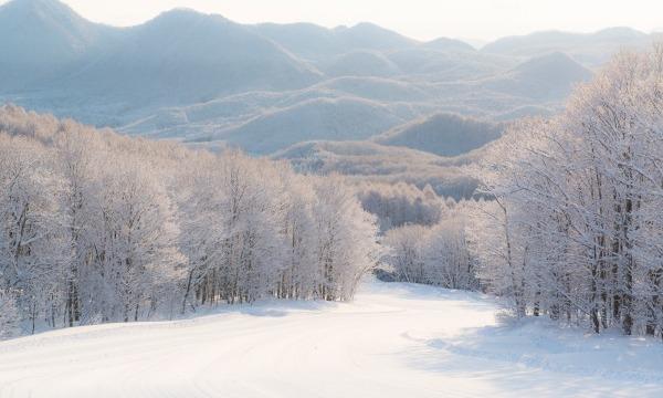 会津高原だいくらスキー場 早割一日リフト券【1500円OFF】 イベント画像3