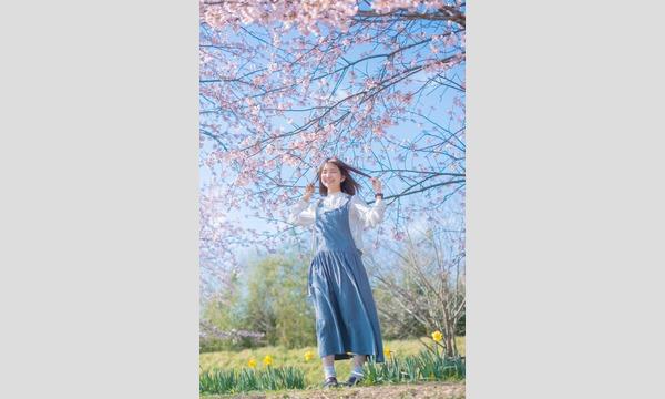 マシュマロ撮影会 2020/3/21(土)王子エリア個人撮影会【桜咲き始め!】 イベント画像3
