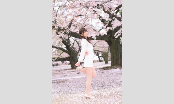マシュマロ撮影会 2017/5/27 (土)薔薇が咲き誇る?!荒川都電沿い個人撮影会