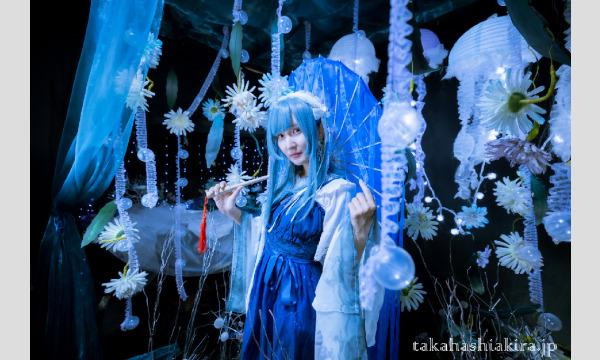 マシュマロ撮影会の月野むん展 2021/12/15(水)〜2021/12/20(月) 参加者募集!イベント
