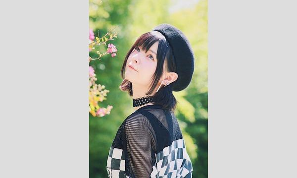 マシュマロ撮影会 2019/1/26(土)神楽坂エリア個人撮影会 イベント画像2