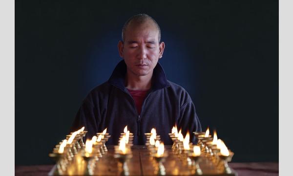【2/24】「+1CINEMA:D」 映画『タシちゃんと僧侶』ケーキセット付上映会 イベント画像2