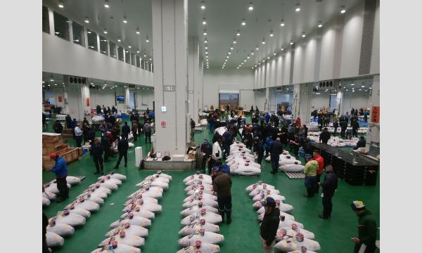豊洲市場見学ツアーONLINE やさしい市場入門 9/25(土)16:00 イベント画像3