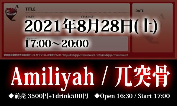 8/28(土) 【Amiliyah / 兀突骨】2マン! イベント画像1