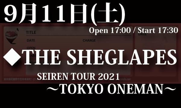 9/11(土) THE SHEGLAPES「SEIREN TOUR 2021~TOKYO ONEMAN~」 イベント画像1