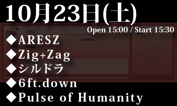 10/23 ARESZ / Zig+Zag / シルドラ / 6ft.down / Pulse of Humanity
