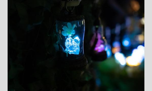 異世界ファンタジー体感型 創作アイテム展示即売会【星降る森の魔法市 飛天ノ章(名古屋特別回)】 イベント画像3