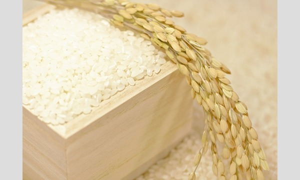 老舗米屋山田屋がおすすめする自分好みのお米の選び方/美味しいごはんの炊き方 イベント画像1