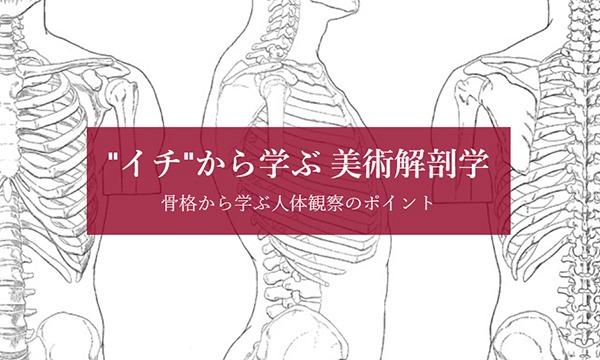 """【LiveUP】""""イチ""""から学ぶ 美術解剖学 骨格から学ぶ人体観察のポイント イベント画像1"""