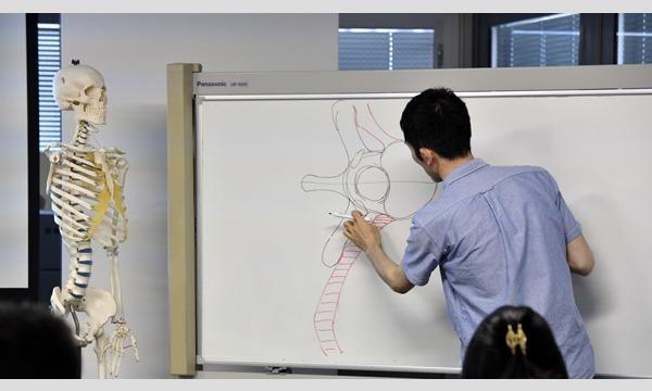 """【LiveUP】""""イチ""""から学ぶ 美術解剖学 骨格から学ぶ人体観察のポイント イベント画像3"""
