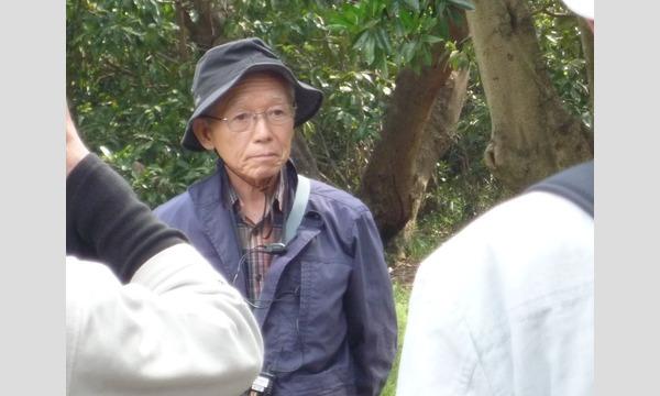 11/26(火)晩秋クルーズ・樹木医と歩く浜離宮恩賜庭園 イベント画像3
