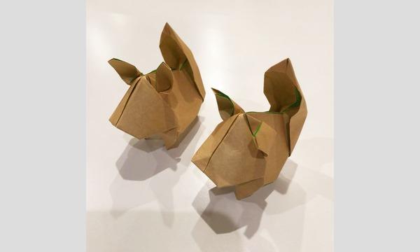 生きものの形に学ぶ 大人の折り紙教室 イベント画像3