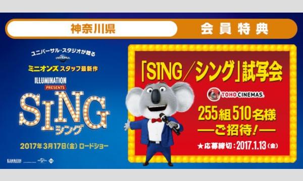 04.【神奈川県】映画「SING/シング」試写会にご招待!