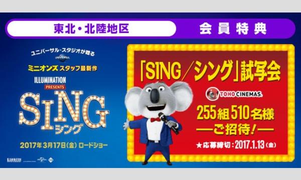 映画「SING/シング」 全国試写会へ抽選でご招待!