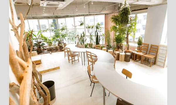 yucoco cafe ハリネズミを作りましょうin名古屋 イベント画像2