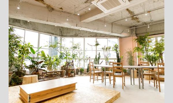 yucoco cafe ハリネズミを作りましょうin名古屋 イベント画像3