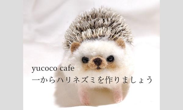 yucoco cafe atelier 一からハリネズミを作りましょう イベント画像1