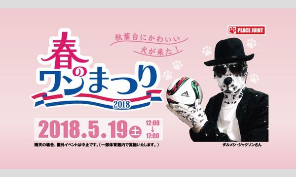 春のワン祭り×湘南ベルマーレフットサルクラブ イベント画像1
