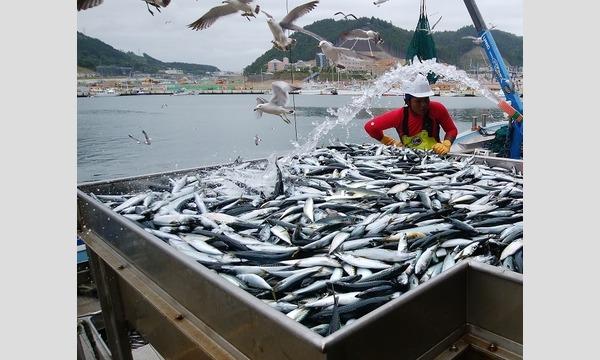 船から定置網漁見学に行って観よう‼ イベント画像1