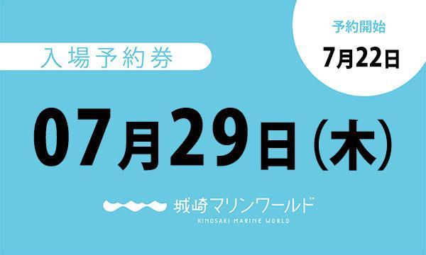 07月29日(木)入場予約券〈城崎マリンワールド〉 イベント画像1