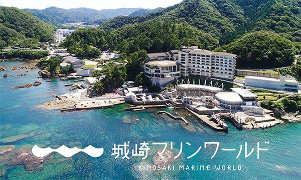 8月19日(水)入場予約券〈城崎マリンワールド〉 イベント画像2