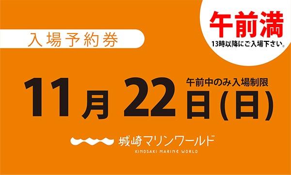 城崎マリンワールドの11月22日(日)入場予約券〈城崎マリンワールド〉イベント