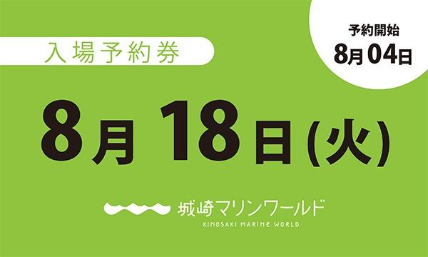 城崎マリンワールドの8月18日(火)入場予約券〈城崎マリンワールド〉イベント