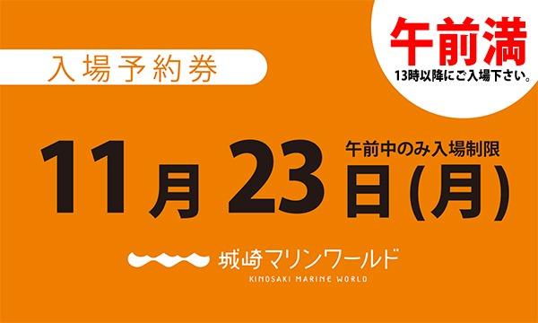 城崎マリンワールドの11月23日(月)入場予約券〈城崎マリンワールド〉イベント