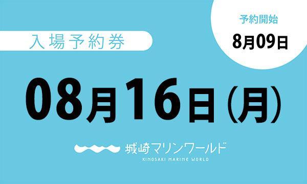 城崎マリンワールドの08月16日(月)入場予約券〈城崎マリンワールド〉イベント