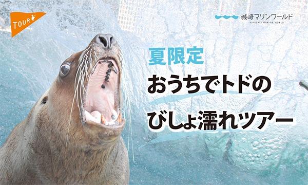 【オンライン】おうちでトドのびしょ濡れツアーイベント