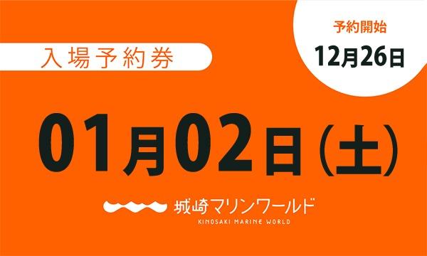 城崎マリンワールドの01月02日(土)入場予約券〈城崎マリンワールド〉イベント