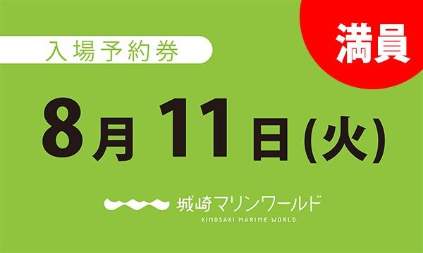 城崎マリンワールドの8月11日(火)入場予約券〈城崎マリンワールド〉イベント